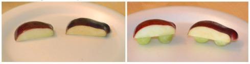 apple car colodge 2